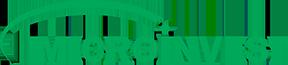 Microinvest logo